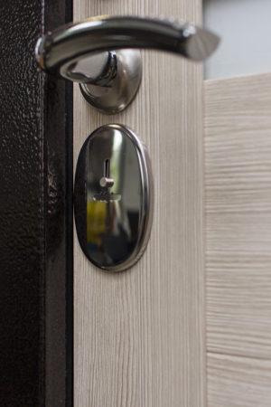Дверь Страж техно